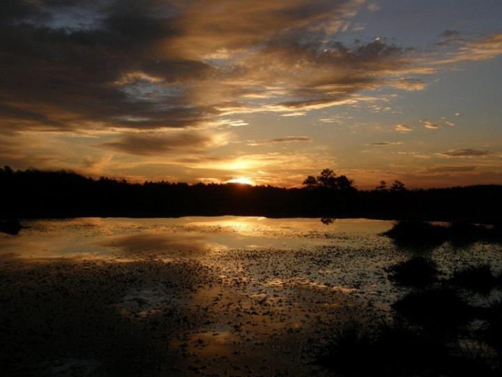 Sunrise.FAR (2).Stokes